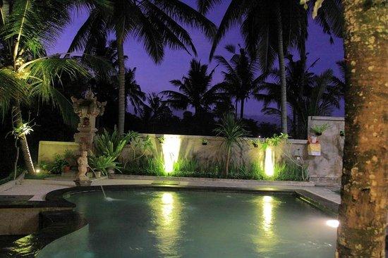 Dewa House Bisma: Swimming pool
