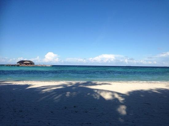 Olhuveli Beach & Spa Maldives: Dive school from the beach just in front of our villa