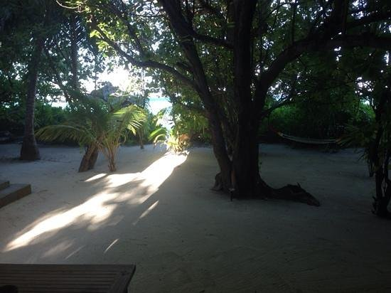 Olhuveli Beach & Spa Maldives: shadey view from the villa - short walk to the sea and shadey hammock in background