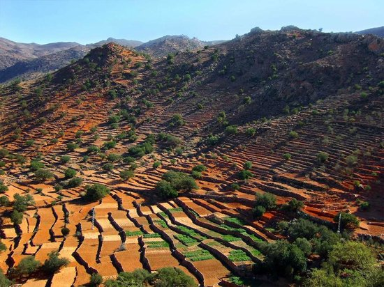 Tafraoute, โมร็อกโก: Terrace cultivations