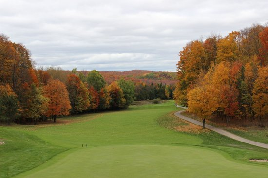 ทรีท็อปส์ รีสอร์ท: golf course