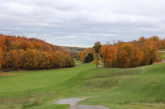 Treetops Resort : golf course