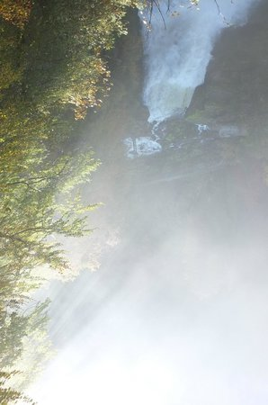 Bateaux du Saut du Doubs : Le Saut du Doubs