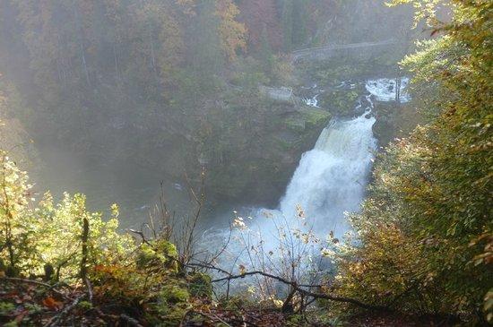 Bateaux du Saut du Doubs : Vu de la France