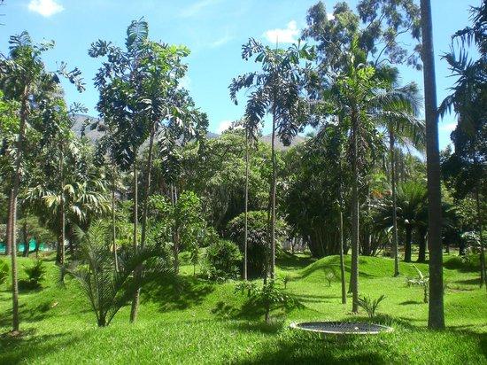 Foto de jardin botanico de medellin medell n patio de for Jardin botanico tarifas