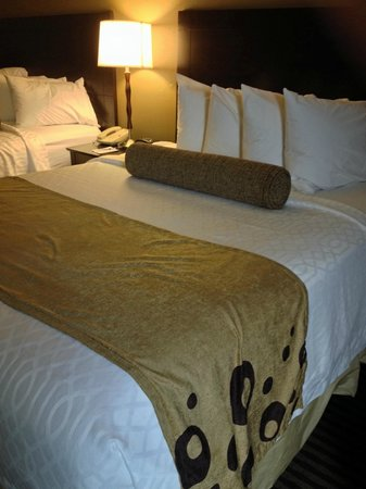Best Western Plus Mishawaka Inn: Inviting beds