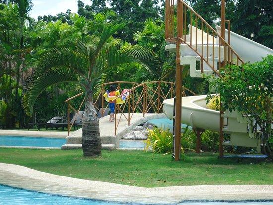 Bluewater Maribago Beach Resort: プール