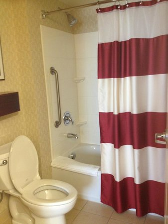 Residence Inn by Marriott Miami Airport: Bathroom
