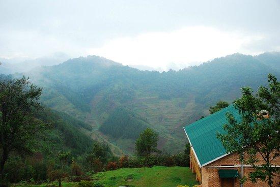 Ruhija Gorilla Safari Lodge: another veranda view