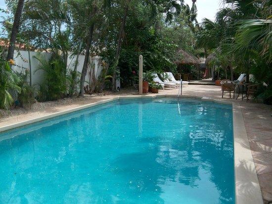Paradera Park Aruba : pool