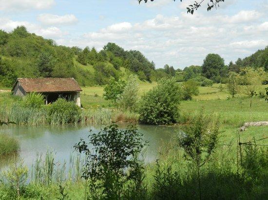 La Cressonnière : étang