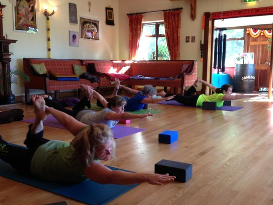 Creacon Wellness Retreat: Half Salabhasana, Half Dhanurasana
