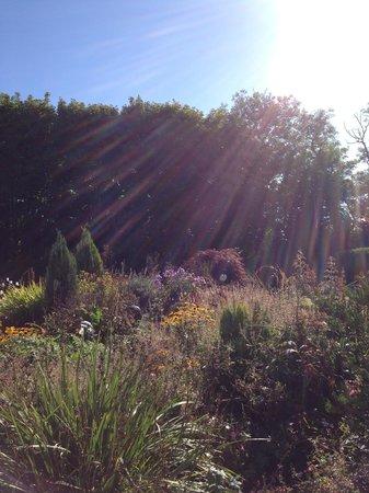 Creacon Wellness Retreat: Light over the Pyramid Garden
