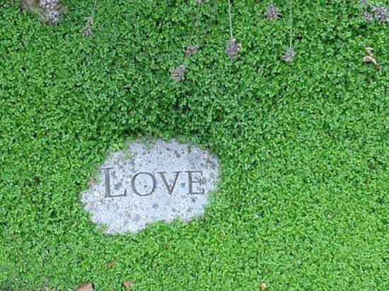 Creacon Wellness Retreat: Love Love Love