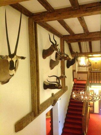 Chalet du Mont d'Arbois: Hall