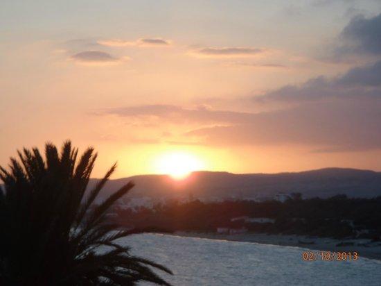 Khayam Garden Beach Resort and Spa: shrek en blacky in actie
