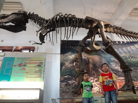 Geologisches Museum: My first trip to Museum