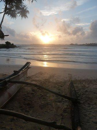 CoCo Bay Unawatuna : Amazing view each night!