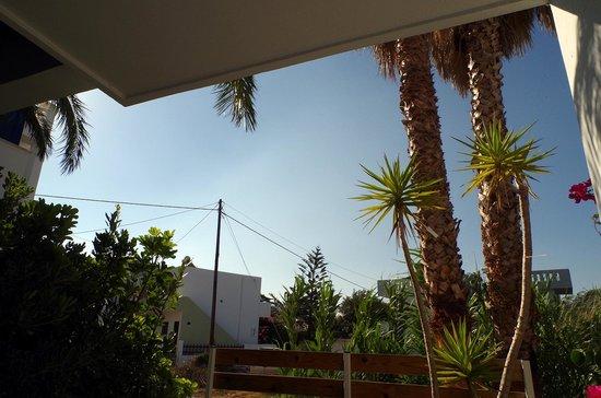 Anna Plakias Apartments : вид с террасы