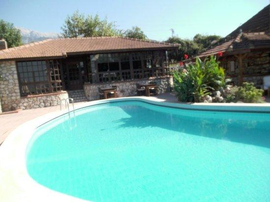 Mountain Lodge: Pool