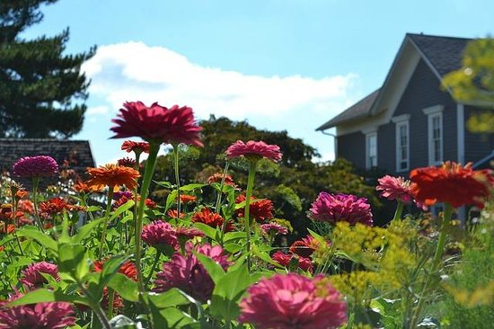 Feller House Bed and Breakfast: Lovely grounds in mid summer