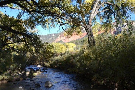 Canon del Rio Retreat & Spa: Short path down to the river.