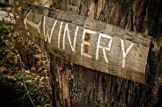 Dobra Zemlja Winery: Winery Here