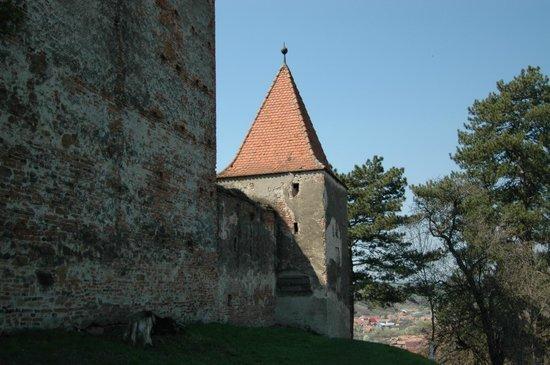 Slimnic Citadel