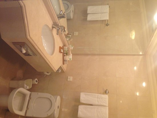 Carmel Forest Spa Resort by Isrotel Exclusive Collection: bathroom