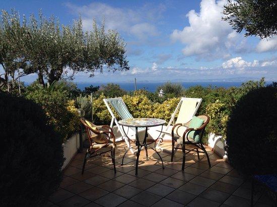 Il Giardino dell'Arte: Camera olivo ..