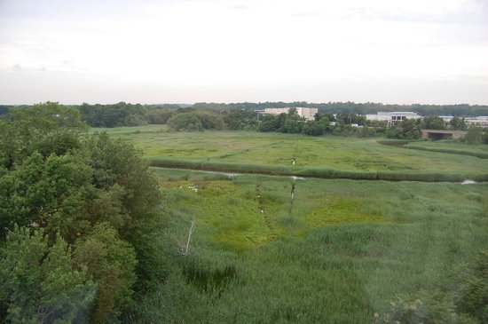 Hyatt Place Milford: View from Room 601