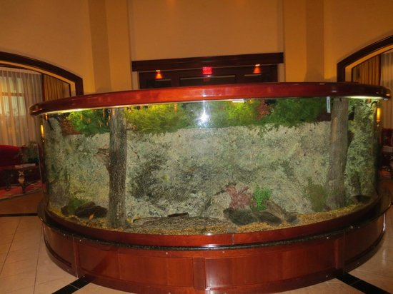 Marriott Shoals Hotel & Spa: fish tank in lobby