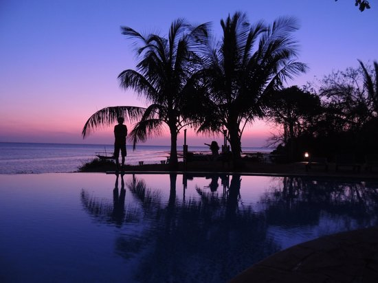 Fumba Beach Lodge: the pool at sunset
