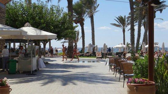 Constantinou Bros Pioneer Beach Hotel : Hotel gardens