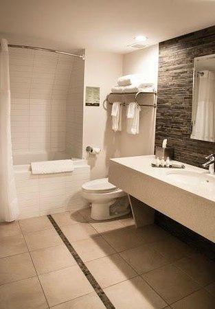 DoubleTree by Hilton Hotel Gatineau-Ottawa: Bathroom