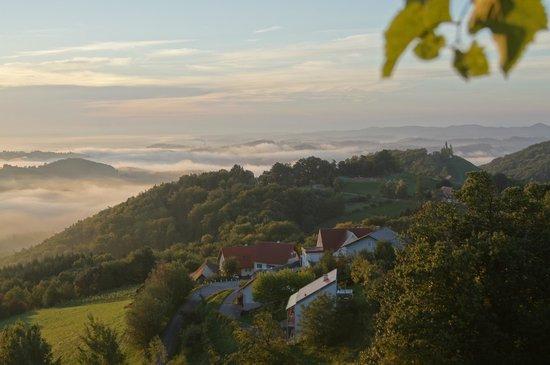 Bio Weingut Warga-Hack Sudsteiermark: Blick von der Terrasse Winzerzimmer