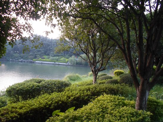 Guilin Park Hotel : View from the front of the hotel