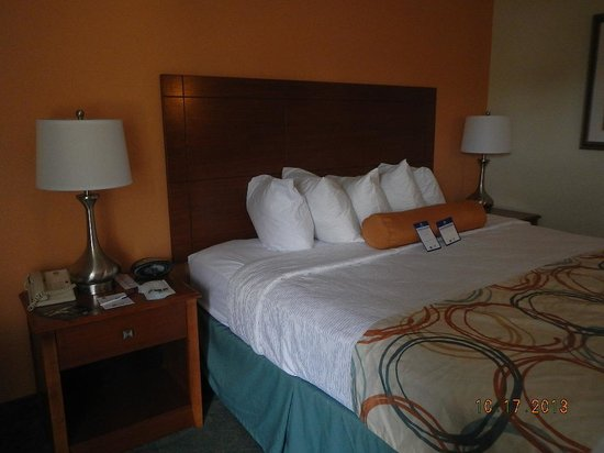 BEST WESTERN PLUS Wilmington/Wrightsville Beach : great bed, lots of pillows