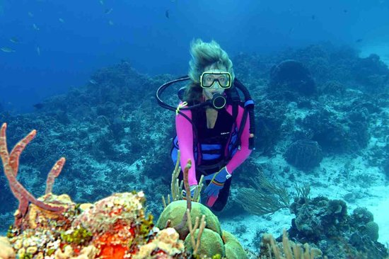 Manta Raya Divers: Palancar Gargens