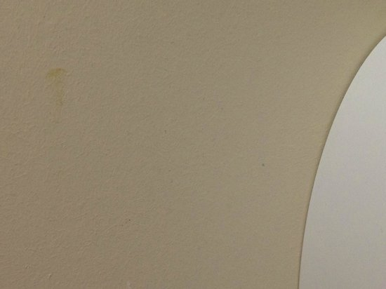 Premier Inn Ripley Hotel : Old smudge of Excrement next to Toilet - Premier Inn Ripley