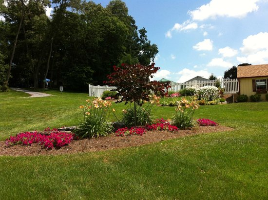 Country Acres Campground: Landscaping in front of pool area