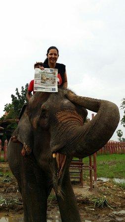 "Elephantstay : Posing with 'Jumpee"" & my local newspaper"