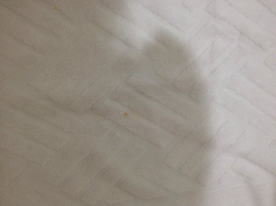 Holiday Inn Express & Suites Stamford: Blood stains on Towels