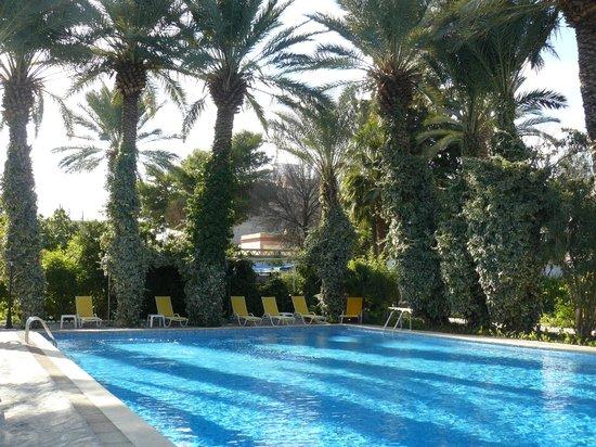 Bou-Saada, Αλγερία: Piscine et jardin