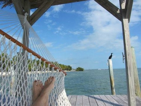 The Moorings Village and Spa : Hammock