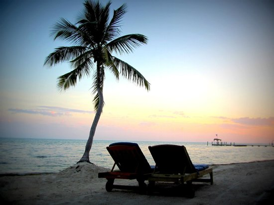 The Moorings Village: Palms
