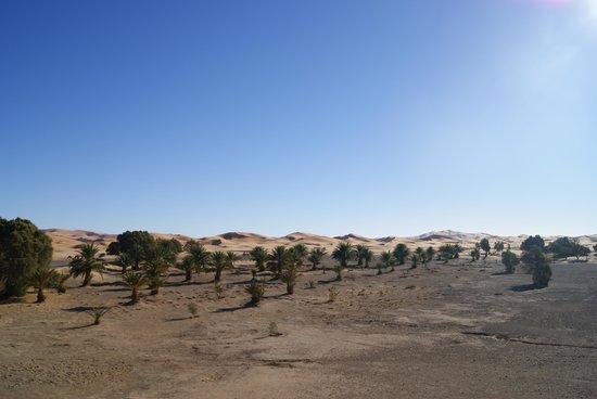 Dar El Janoub: vista dalla camera