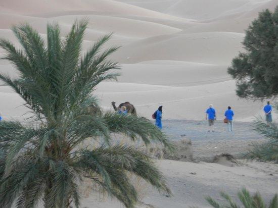 Dar El Janoub: partenza direttamente dall'albergo con dromedari