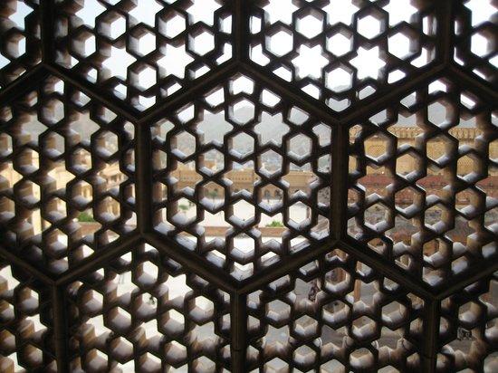 Agra, India: Hidden world