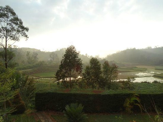 Andasibe Hotel: Early morning view from Bungalow 1